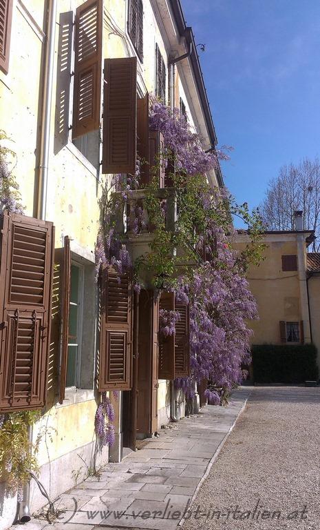 4-Villa Blumen