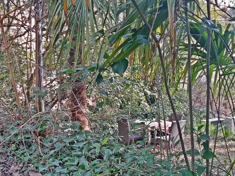 ruhige Ecke im Garten