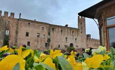Blumenpracht vor den Toren