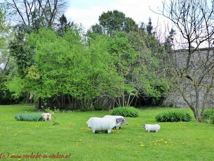 Azienda Agricola Foffani – Clauiano